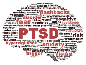 Mindfulness, ptsd, trauma, brain
